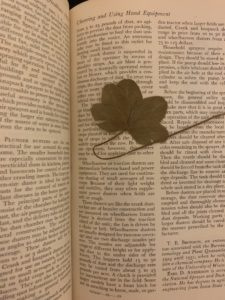 four leaf clover, estate sale finds, treasure hunt, pickers, sale, sales, shopping, boston