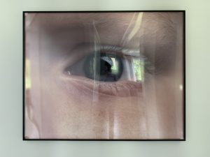 tony tasset, photography, eye, eyeball, chicago, artist, realism, museum quality, public art